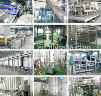 Professional Processing Making Pomegranate Guava Juicer Pomegranate Juice Extractor Machine