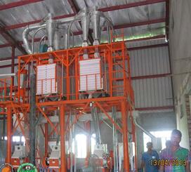 Good quality 25T Wheat Flour Mills Machine For Sale