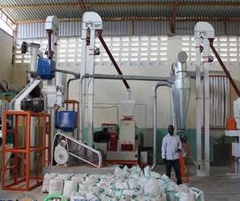 flour grinding machine for maize wheat flour grinder