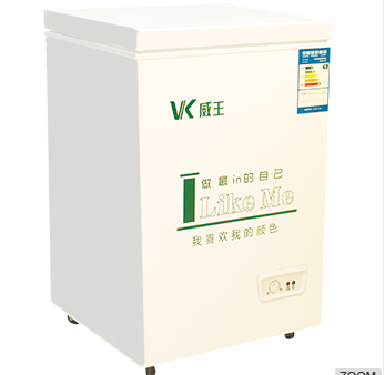 Vertical freezer for home appliance