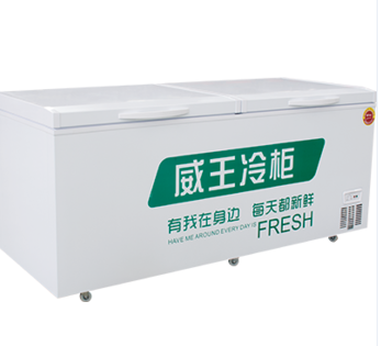Rechargeable battery freezer