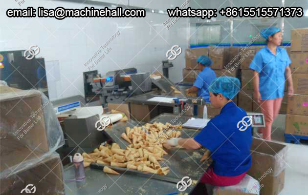 Automatic Crispy Ice Cream Cone Production Line Price