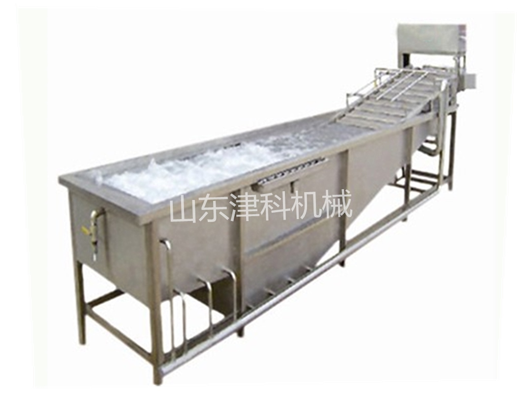 Fruit and vegetable cleaner washing machine